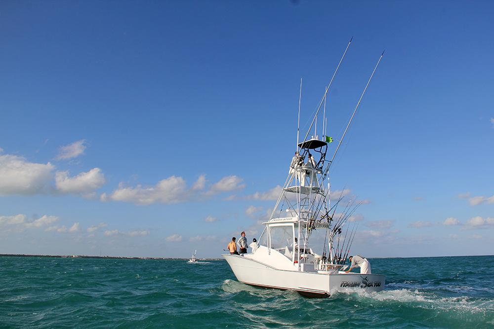 vitamin sea too fishing team 2014 jimmy johnson s